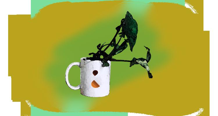 3 Maneiras para Reutilizar a Borra do Café nas Plantas