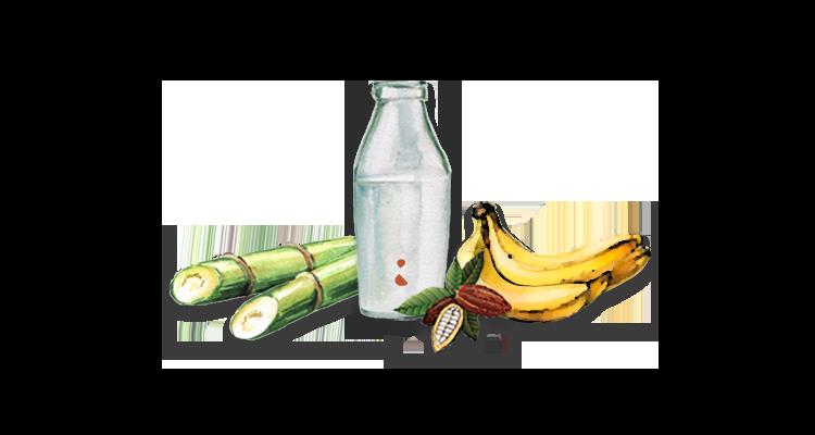 Receita Fácil e Nutritiva de Shake Vegano de Café